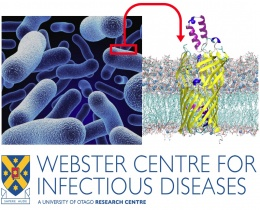 Webster Centre for Infectious Diseases Satellite on Infectious Diseases & Membrane Proteins