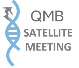 QMB Satellite on Medical Devices and Technology